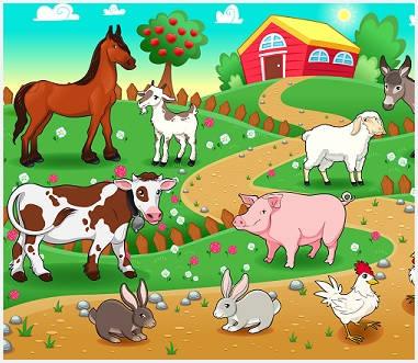 dieren in de wei