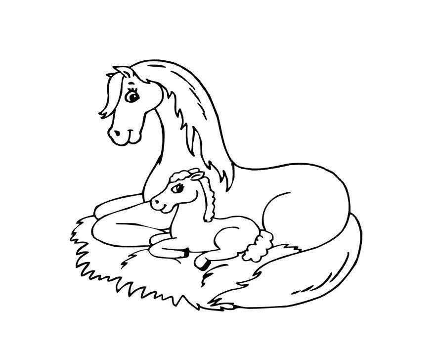 paard en veulen boerderij kleurplaat